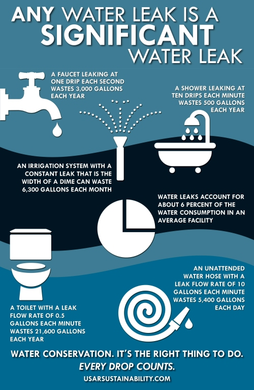 Water Poster Leak Infographic