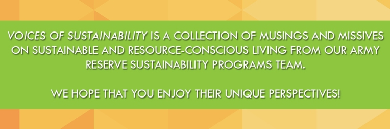 Voices of Sustainability Blog Banner